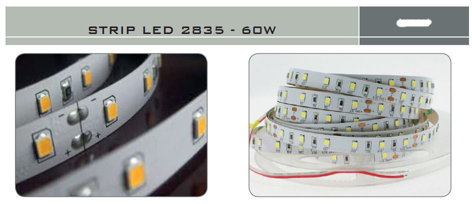 STRIP LED 60W 24V L.CALCA 5MT IP65